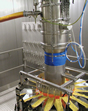 Vacuum conveying cheese
